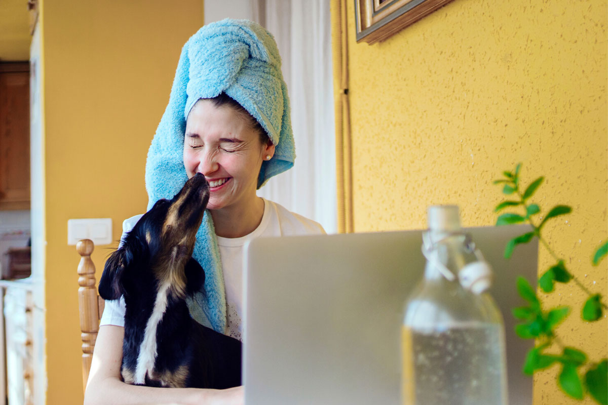 Woman sitting at desk with laptop, with hair wrapped in towel and her dog on her lap.